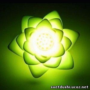 Энергия «Сознание Изумрудного Лотоса и Золотого Сияния» S2803983
